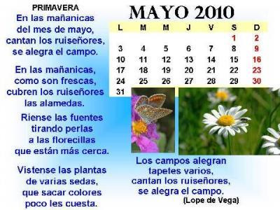 20100501103514-mayo1.jpg