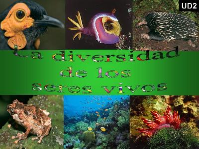 20091005210726-la-diversidad-de-los-seres-vivos-ud02.jpg